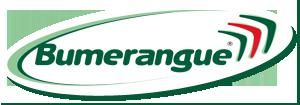 Logo Bumer